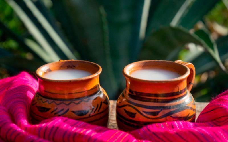bebidas tradicionales de méxico pulque
